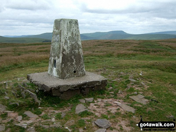 Walk Fan Frynych walking UK Mountains in The Brecon Beacons Area The Brecon Beacons National Park Powys    Wales