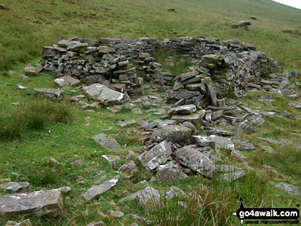 Sheepfold/ruin on Gorllwn onthe way to Fan Fawr