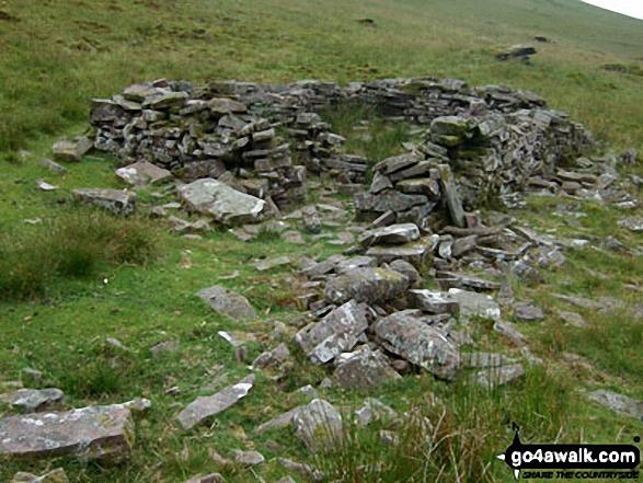 Sheepfold/ruin on Gorllwn onthe way to Fan Fawr