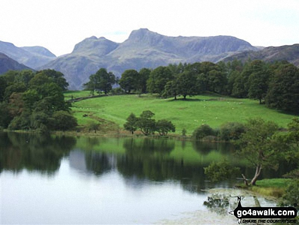The Langdale Pikes from Loughrigg Tarn