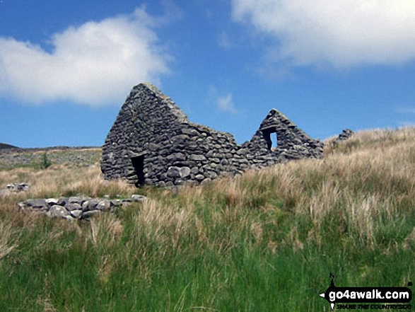 Ruined barn on the lower slopes of Rhinog Fawr above Nantcol