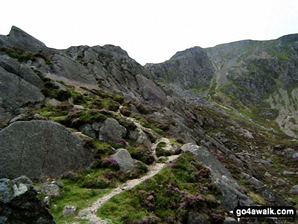 Approaching the summit of Carnedd Moel Siabod