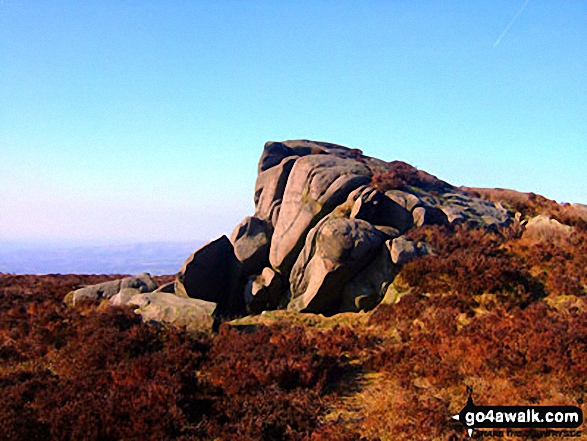 On The Roaches