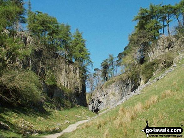 Trow Gill just beyond Ingleborough Cave