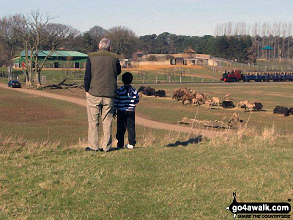 My Son and his Grandad on a Hill at Whipsnade