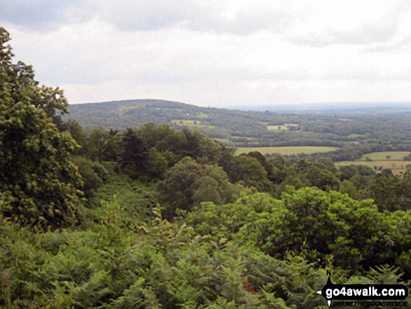 Leith Hill and the North Downs from the top of Holmbury Hill. Walk route map su109 Pitch Hill and Holmbury Hill from Ewhurst photo