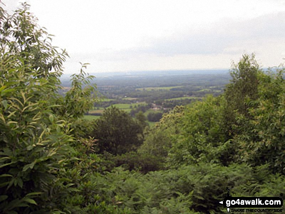 Looking South from the top of Holmbury Hill. Walk route map su109 Pitch Hill and Holmbury Hill from Ewhurst photo