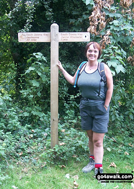 Walk ha111 Cheesefoot Down from Winchester - On The South Downs Way - One mile from the end nr Winchester