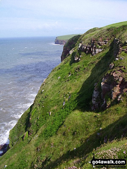 On South Head, St Bees