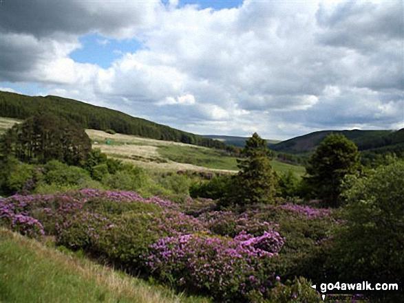Neuadd Reservoir from Graig Fan Du. Walk route map po100 Pen y Fan from Neuadd Reservoir photo