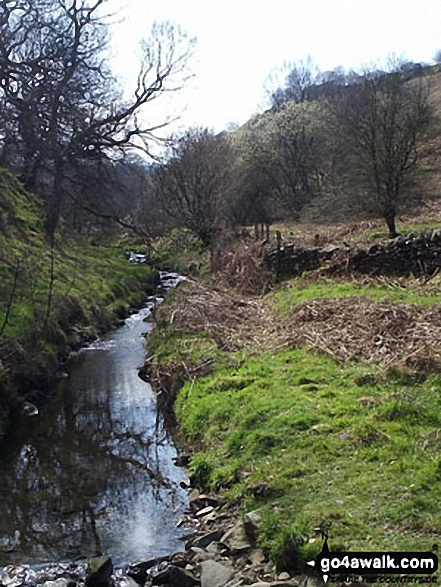 Highlow Brook near Stoke Ford