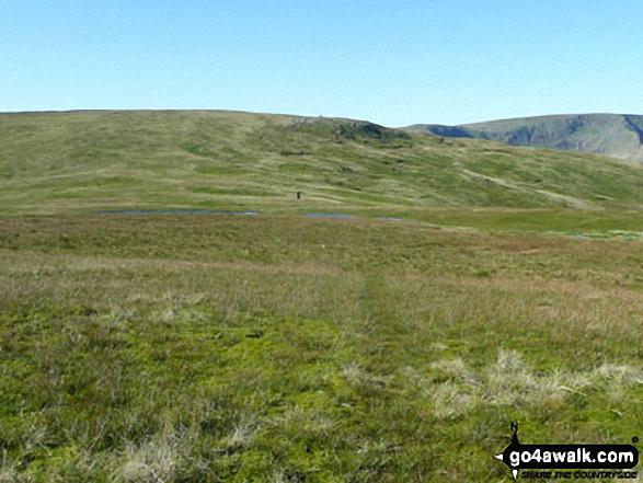 Bullman Hills summit with Cross Fell beyond