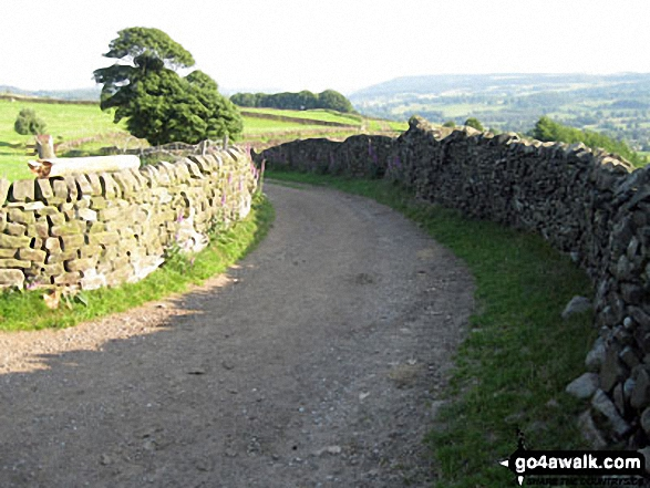 Track leading to Bar Road, Baslow Bar near Lady Wall Well