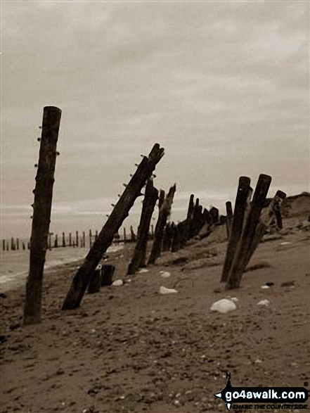 Coastal Defences along Spurn Head