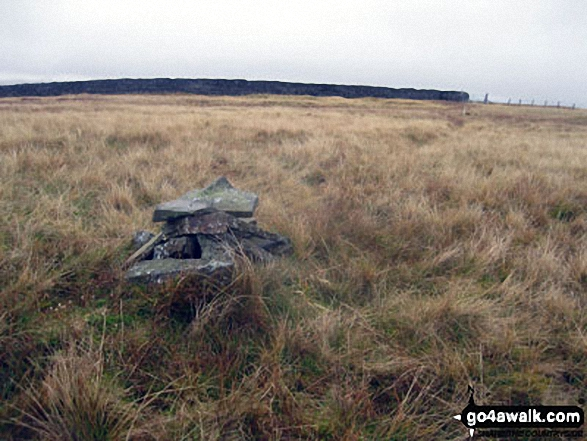 Round Hill (Tyne Head) summit cairn