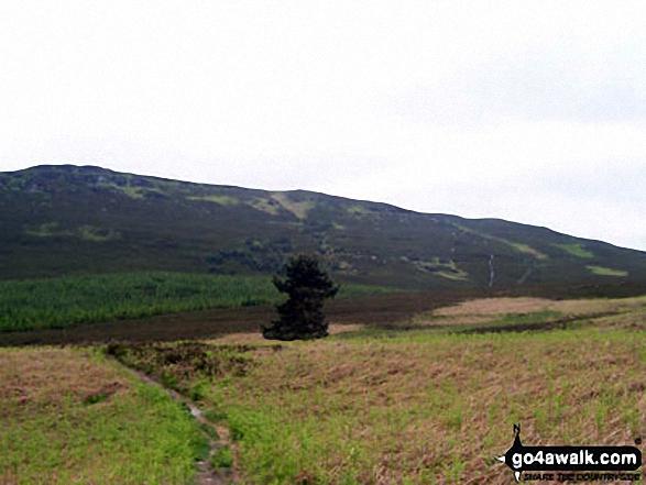 Long Crag from Hard Nab