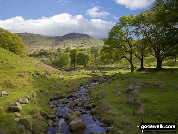 Chew Brook with Hoarstone Edge beyond from Dove Stone Reservoir