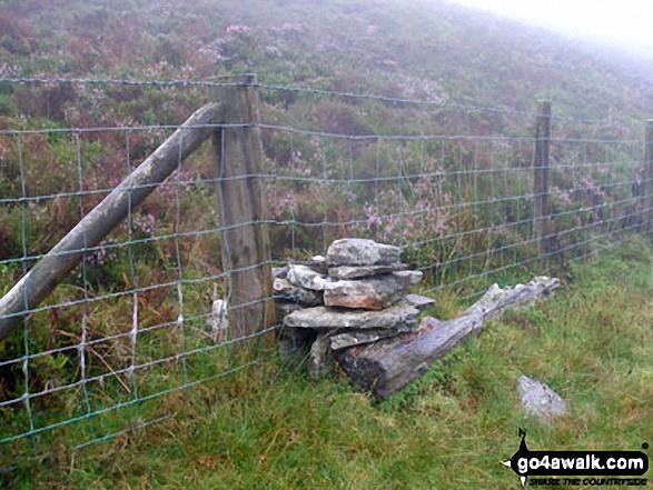 Fence crossing between Llechwedd-llyfn summit cairn and Foel-boeth (Llyn Celyn)
