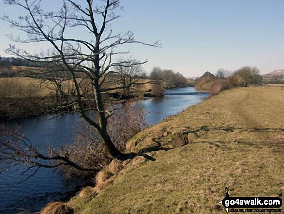 The River Ure, Askrigg Bottoms