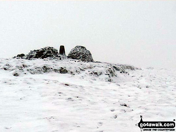 Cold Fell Pike (Geltsdale) summit on the snow