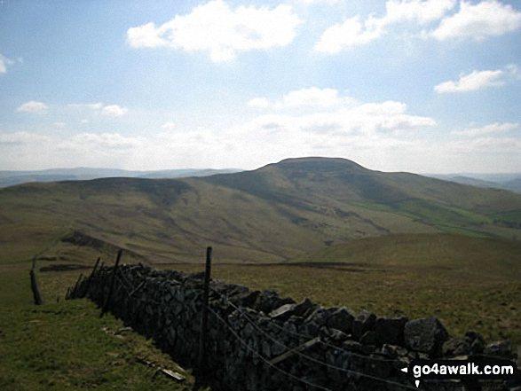 Looking South East to Cushat End and Hownam Law from Grubbit Law