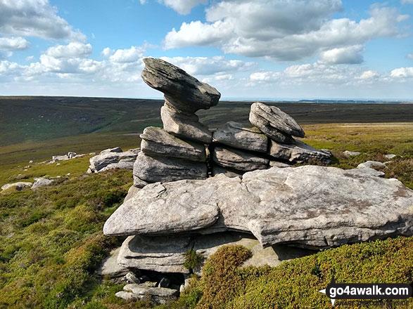 Wind sculptured rocks at Crow Stones