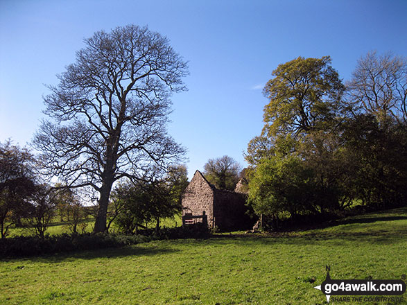 Ruined barn near Cantrell's House, Back of Ecton