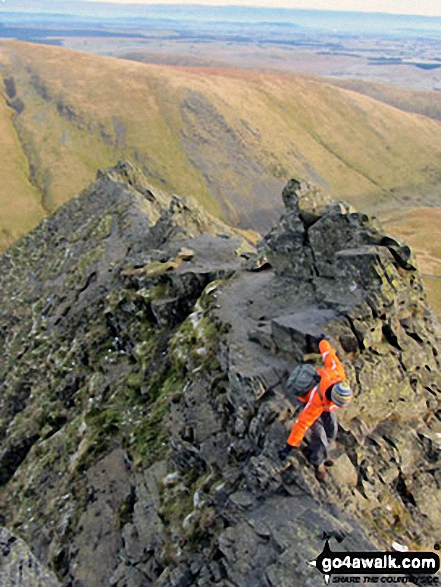 Sharp Edge edge in all its infamous glory