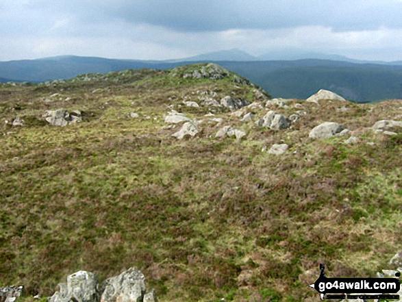 Walk Rhobell Ganol walking UK Mountains in The Arenigs Area Snowdonia National Park Gwynedd    Wales