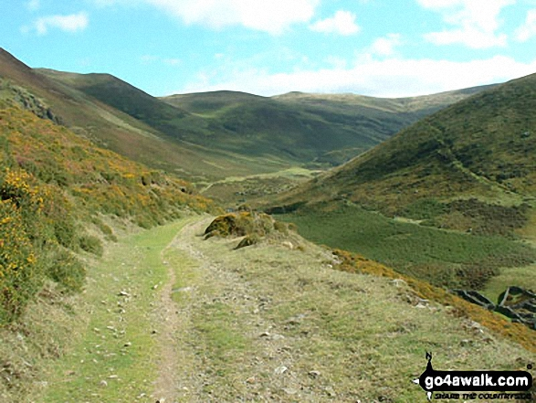 The track to Llyn Anafon in September