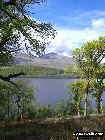 Ben Lawers from Loch Tay