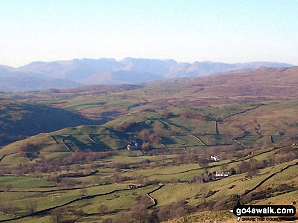 Sca Fell and Scafell Pike from Ulgraves (Potter Fell)