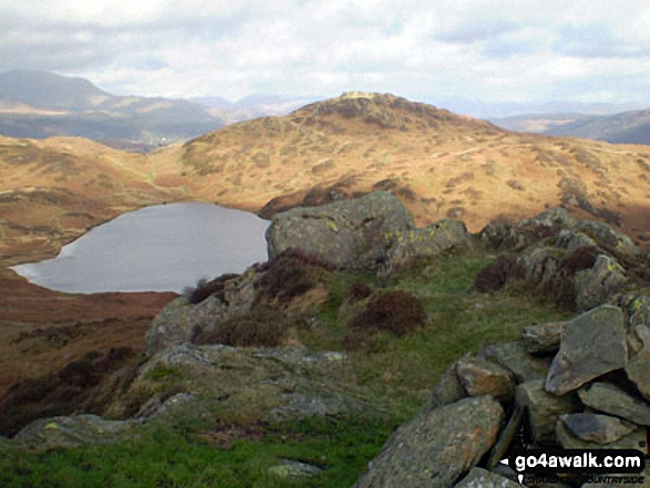 Beacon Tarn and Beacon (Blawith Fells) from Wool Knott
