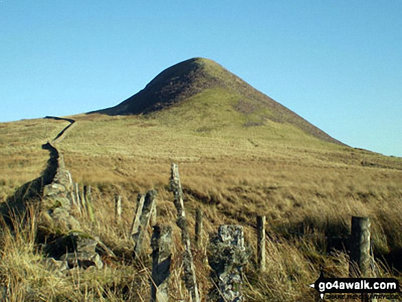 Walk Skelfhill Pen walking UK Mountains in The Scottish Borders  The Borders    Scotland