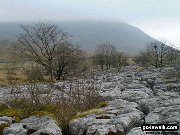 Ingleborough in mist beyond Limestone Pavement in Chapel-le-Dale
