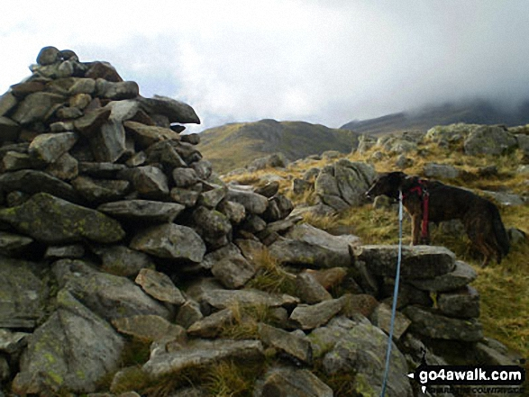 Walk Gallt yr Ogof walking UK Mountains in The Glyders (or Glyderau) Area Snowdonia National Park Conwy    Wales