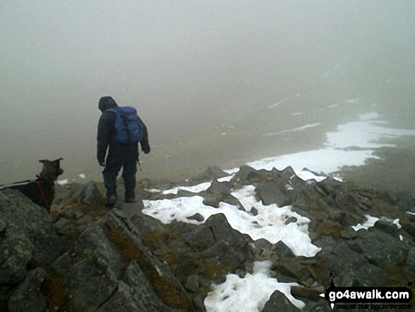 Walk ny191 Ingleborough and Raven Scar from Ingleton - On Ingleborough in the snow