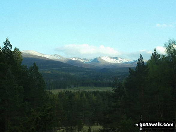 Early Morning in The Cairngorms from near Ryvoan Bothy