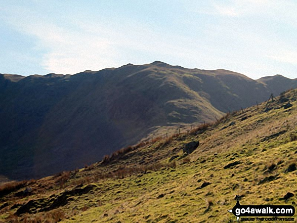 Great Coum (left), Greyrigg Pike and Little Coum (right) from the lower slopes of Grayrigg Forest