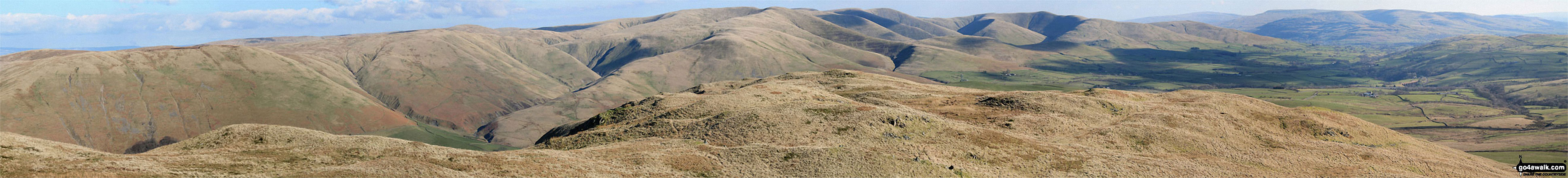 Blease Fell and The Howgill Fells 2000ft'ers - Randygill Top, The Calf, Calders and Fell Head (Howgills) - from Grayrigg Pike (Grayrigg Forest) summit