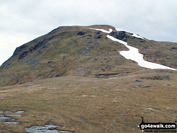 Meall Glas (Glen Lochay) from Meal Glas Beag
