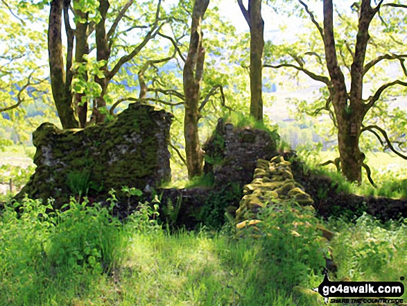 The remains of St Fillan