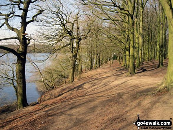 Lower Rivington Reservoir shore path