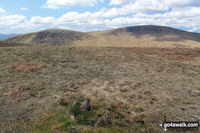 Moorbrock Hill summit with Keoch Rig (left) and Windy Standard (right) in the background