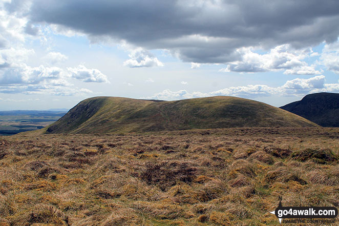 Moorbrock Hill (left) and Moorbrock Hill (North Top) from Keoch Rig