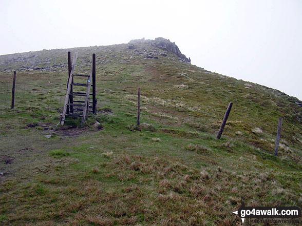 Walk po117 Cadair Berwyn and Post Gwyn from Pistyll Rhaeadr - Ladder stile giving access to Moel Sych
