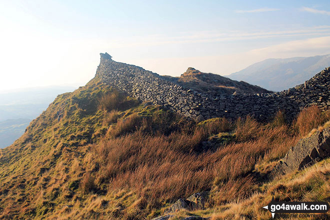 The high drystone wall on Low Pike (Scandale)