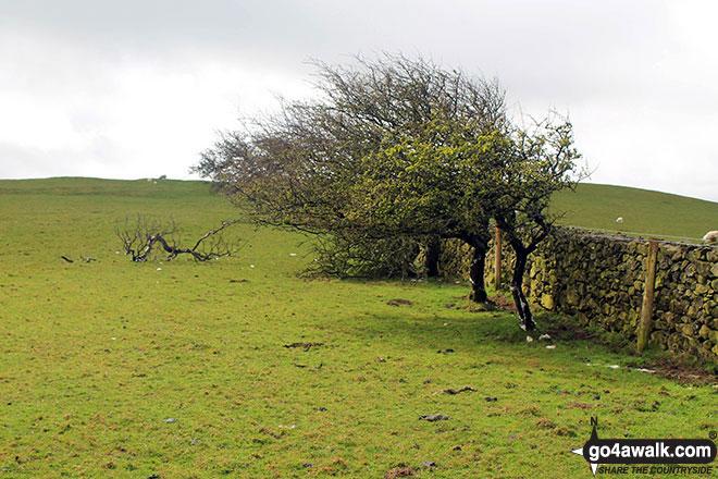 St. John's Hill (Caermote Hill)