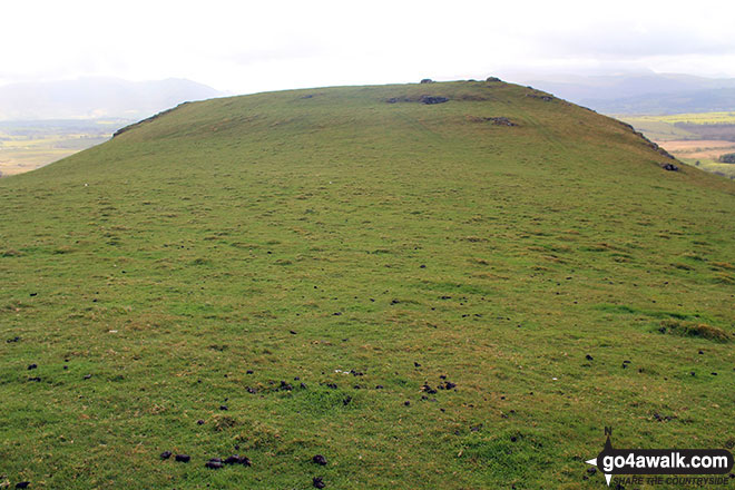 Caermote Hill from St. John's Hill (Caermote Hill)