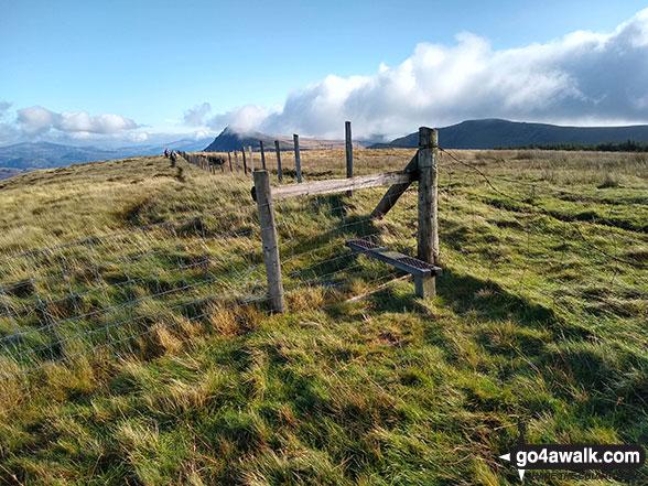 Walk Braich Ddu (Craig Cwm-llwyd) walking UK Mountains in The Cadair Idris Area Snowdonia National Park Gwynedd    Wales